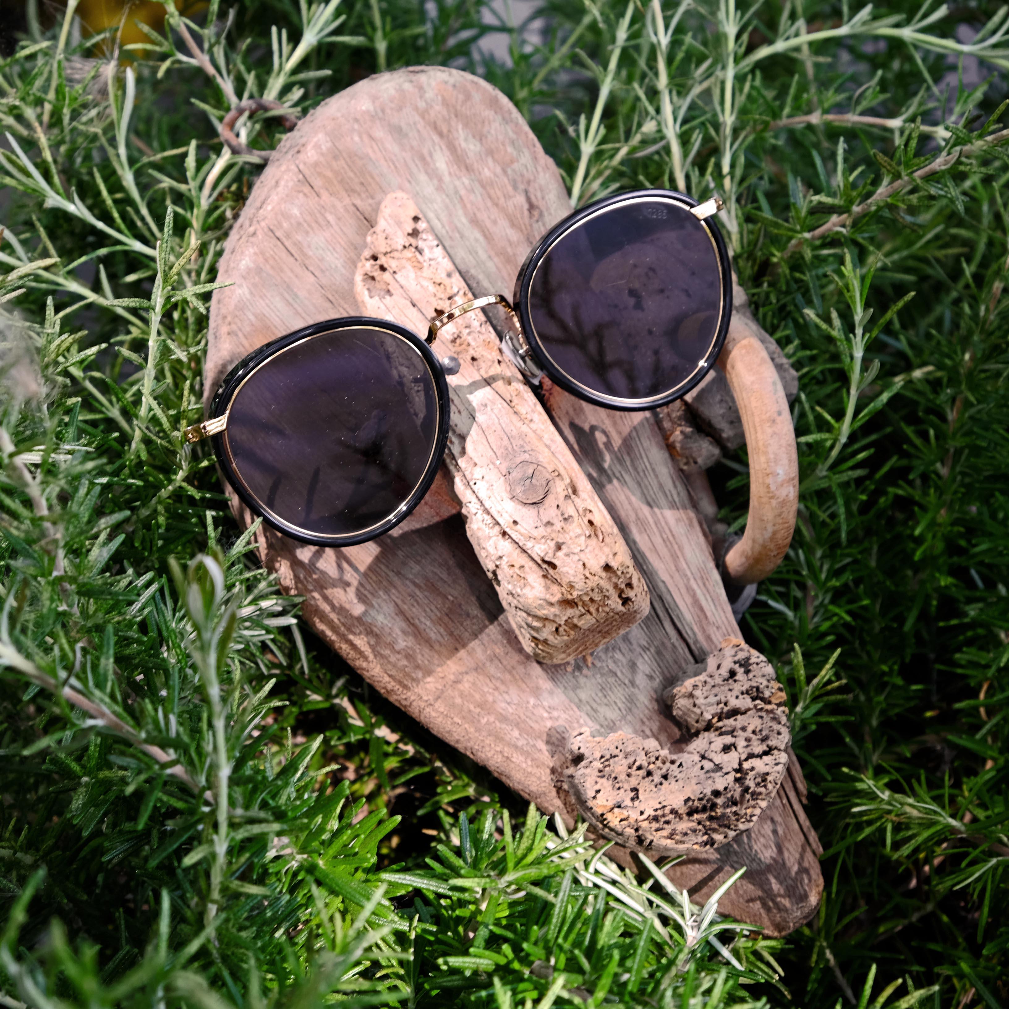 eyevan-sonnenbrille-schwarz-neu-01